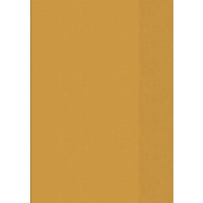 Hefthülle A5 tr orange Folie