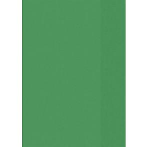 Hefthülle A5 tr grün Folie