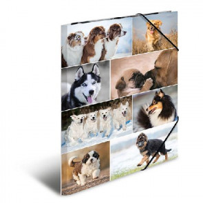 Herma Sammelmappe A3 Gummizug Lieblingstiere Hunde
