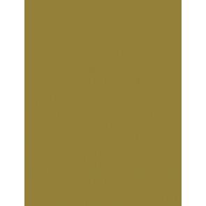 Folia Foto-Karton 300 g 50x70 65 gold matt 10er Paket