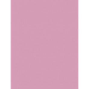 Folia Foto-Karton 300 g 50x70 26 rosa 10er Paket