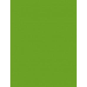 Folia Foto-Karton 300 g 50x70 55 grasgrün 10er Paket