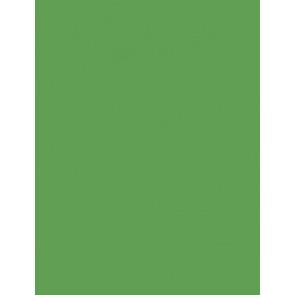 Folia Foto-Karton 300 g 50x70 54 smaragdgrün 10er Paket
