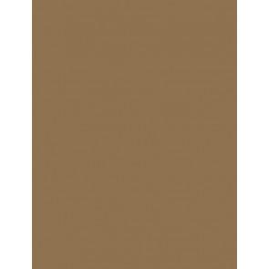 Folia Foto-Karton 300 g 50x70 6175 rehbraun 10er Paket