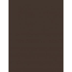 Folia Foto-Karton 300 g 50x70 70 dunkelbraun 10er Paket