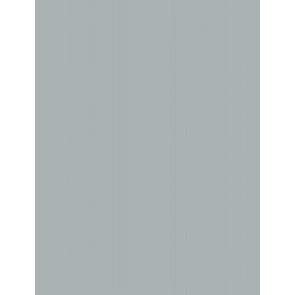 Folia Foto-Karton 300 g 50x70 60 Silber matt 10er Paket
