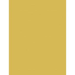 Folia Foto-Karton ca 260g 50x70 gold-glänzend 10er Paket