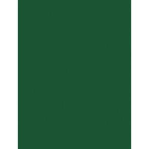 Folia Moos-Gummi 2mm 29X40cm tannengrün 5er Paket