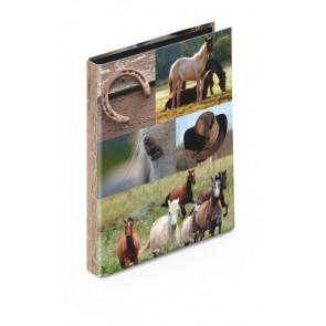 Venceremos Ringbuch DiN A4 30mm 2Ring Motiv Pferde
