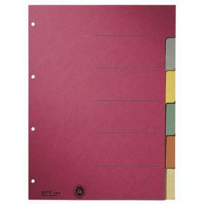 Leitz Ringbuch-Register A4 6Bl Durchgefärbter Karton