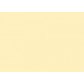 RNK Karteikarten DIN A6 gelb blanco 100St.