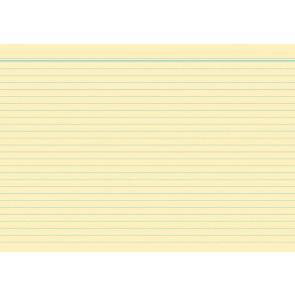 RNK Karteikarten DIN A5 gelb liniert 100St.