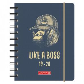 Brunnen Schülerkalender Boss DIN A6 2019/20