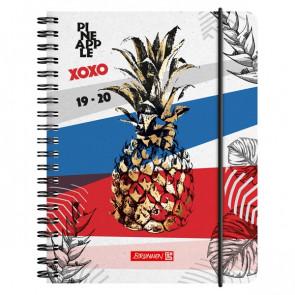 Brunnen Schülerkalender Pineapple DIN A6 2019/20